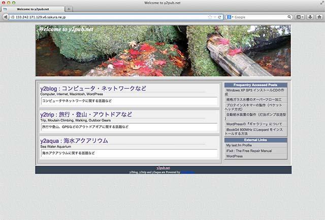IPv6 DNS Name Space