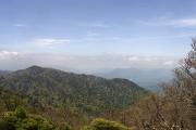 吉野の山々かな