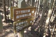 21世紀の森公園への案内標識