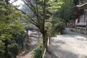 玉置神社の境内