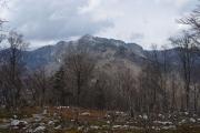 和佐又山から大普賢岳を望む