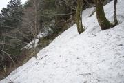 本来の登山道?