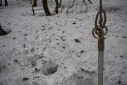 雪にどっぷり