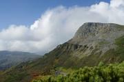 忠別岳の西側斜面