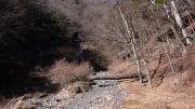 西沢を巻く作業道路