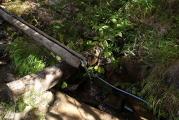 小屋脇の水場