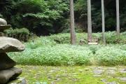 浄発願寺の跡