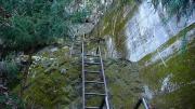 堰堤の梯子