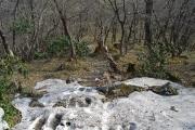 登山道の一部に残雪