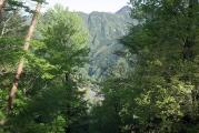 左手眼下に二十一世紀の森公園