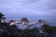 ウトロ漁港は朝から忙しそう
