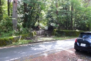 舗装された林道