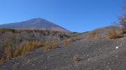 目の前に富士山の勇姿が