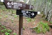 富士箱根トレイルで下山