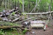 廃墟小屋の残骸