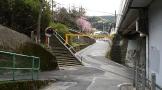 駅のすぐ裏に階段