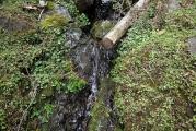 小さな沢の水汲み場