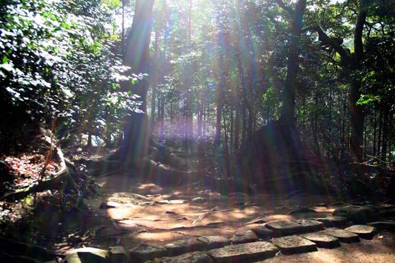 日向薬師の参道