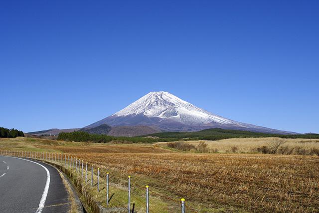 忠ちゃん牧場から富士山南面