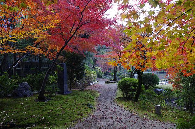 廻遊式庭園
