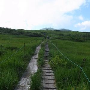 木道の緩やかな登山道