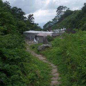 湯殿山神社の本殿