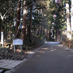 中尊寺の参道