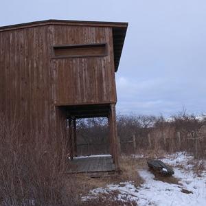 湖岸の観察小屋