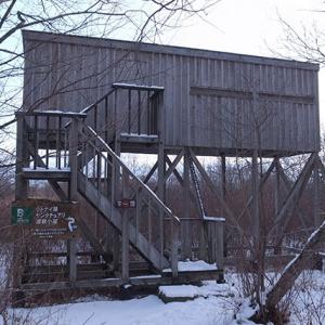 草原の観察小屋