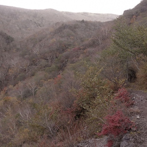 静かな山歩き