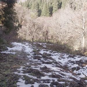 雪が残っていた