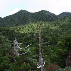 山の至る所に大きな岩が