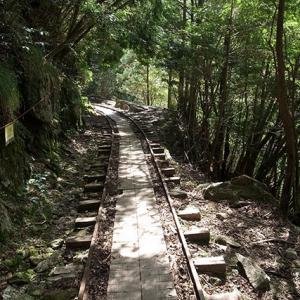 森林鉄道の軌道路
